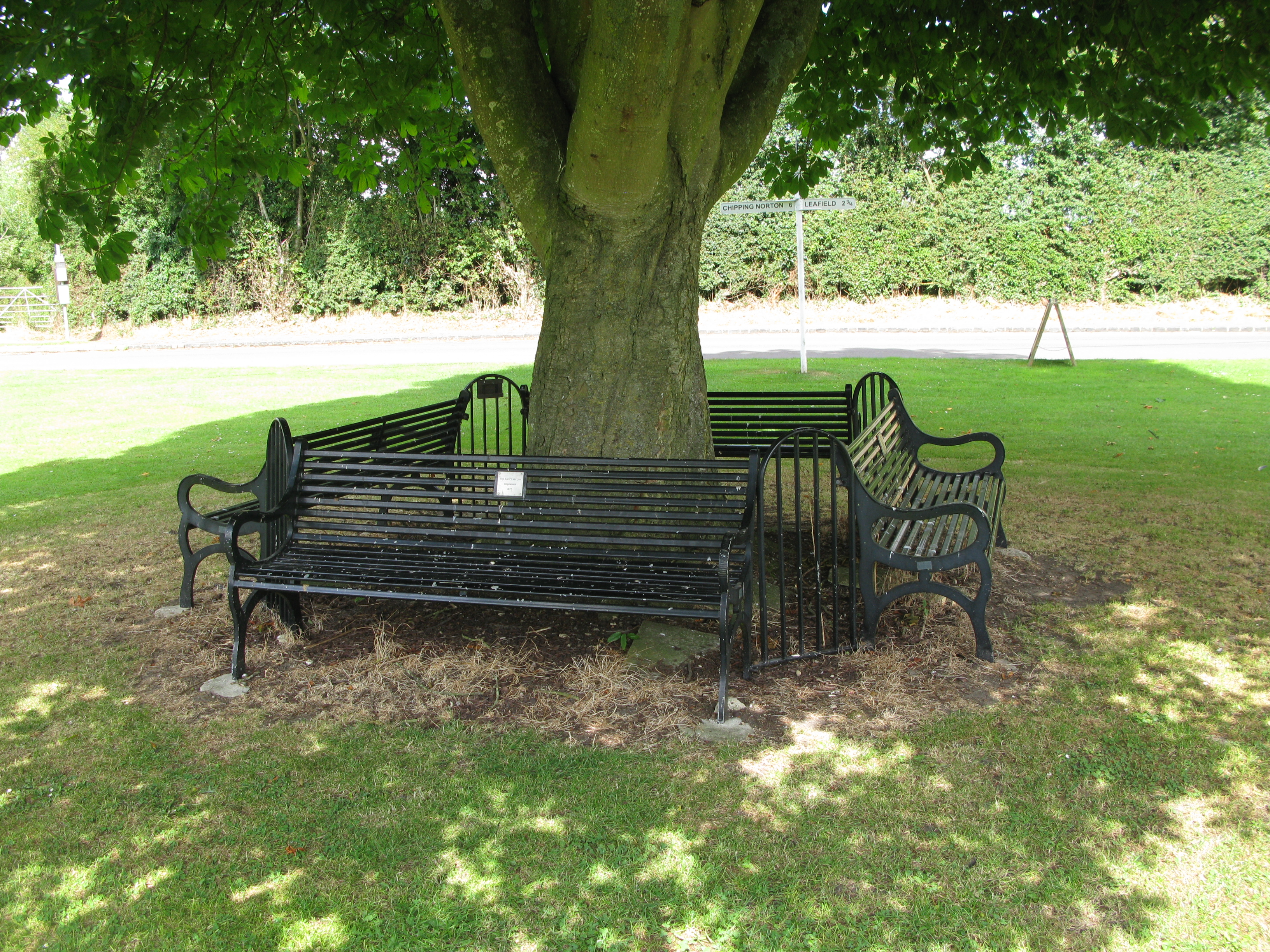 Benches on Village Green Today