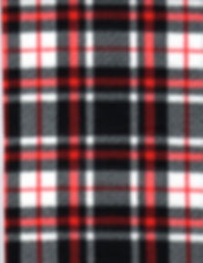 2017BlackandRedplaid.jpg