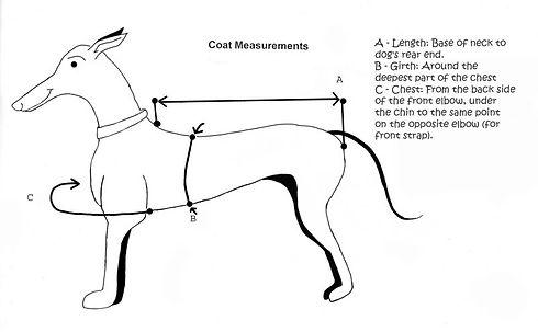TB coat measurement.jpg