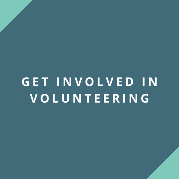 Website: National Council for Voluntary Organisations