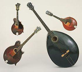 Gibson-mandolin-orchestra.jpg
