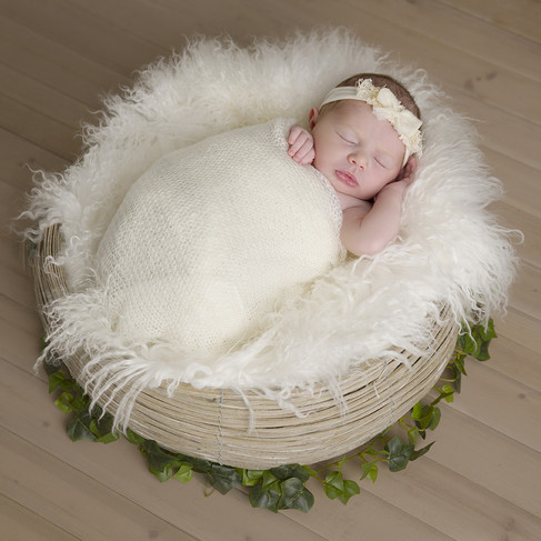 A newborn baby sleeping in a nest