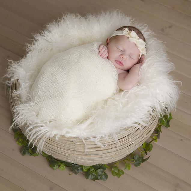 A newborn baby sleeping in a nest
