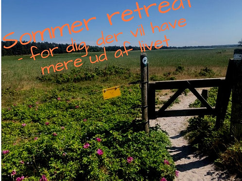 Sommer retreat 2021 - enkeltværelse