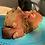 Thumbnail: Banana Bread with Walnuts