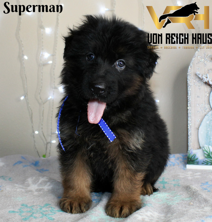 superman6 - Copy.jpg