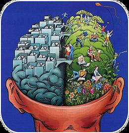 otak kanan dan kiri.png