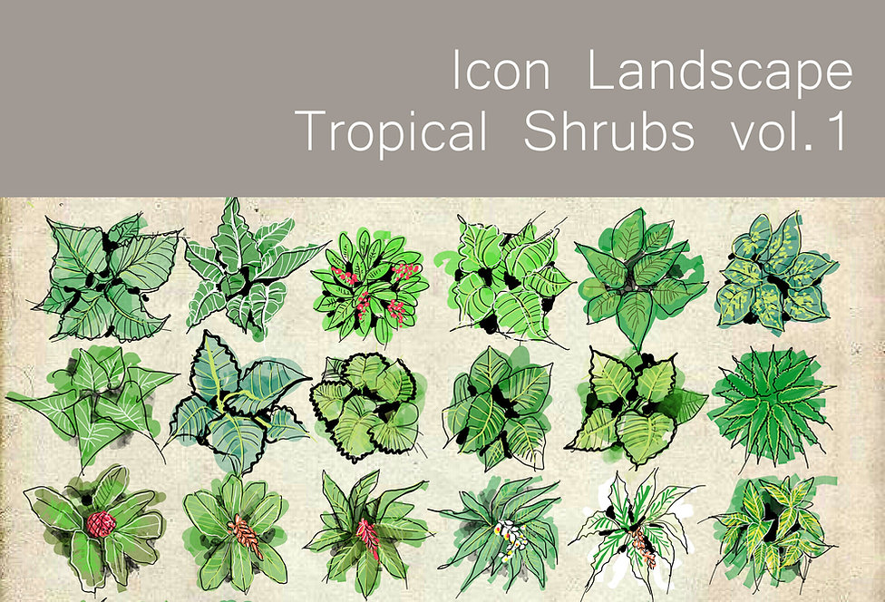 ICON LANDSCAPE TROPICAL SHRUBS VOL 1.jpg