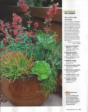 5280 Home, 5280, container gardening, denver dirty girls, ddg container gardening, tucson, tucson container gardening, campagnia pots, succulents, agaves, gardening, fine gardening, face pot, campagnia pots, campagnia face pots, air plants, fine gardening