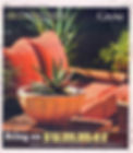 Colorado Homes and Lifestyles, C5280 Home, 5280, container gardening, denver dirty girls, ddg container gardening, tucson, tucson container gardening, campagnia pots, succulents, agaves, gardening, fine gardening, face pot, campagnia pots, campagnia face pots, air plants, fine gardening, a gardener's garden, tucson, tucson gardening, tucson container gardening, fine gardening, Grow, Denver Post, better homes and gardens, summer, grow, denver post