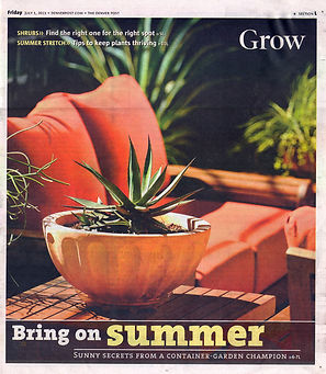 Colorado Homes and Lifestyles, C5280 Home, 5280, container gardening, denver dirty girls, ddg container gardening, tucson, tucson container gardening, campagnia pots, succulents, agaves, gardening, fine gardening, face pot, campagnia pots, campagnia face pots, air plants, fine gardening, a gardener's garden, tucson, tucson gardening, tucson container gardening, fine gardening, Grow, Denver Post
