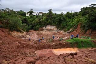PRAD - Projeto de Recuperação de Áreas Degradadas.