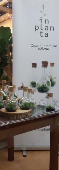 Botanic store