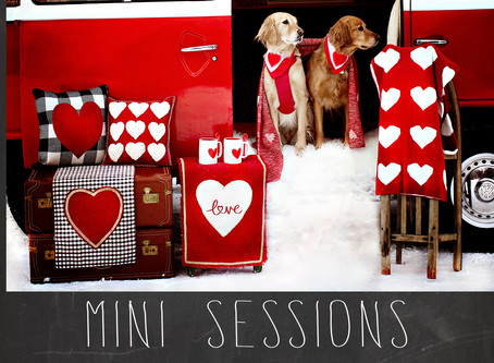 Valentine Mini Sessions