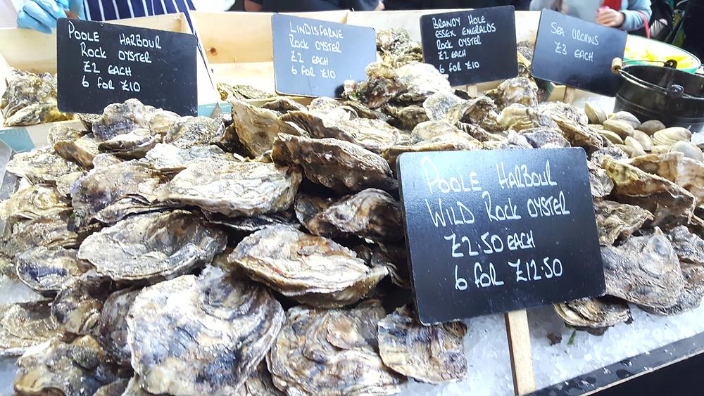 shell seekers fresh oysters wild rock