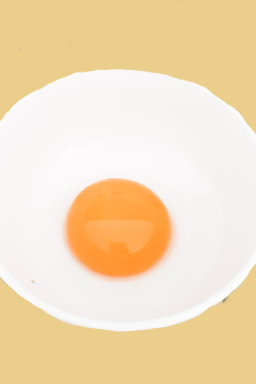 egg yolk separated