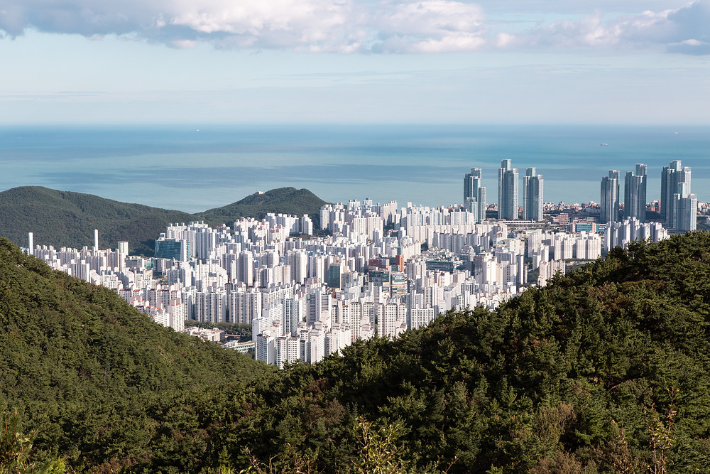 Busan mountain top view city line skyline