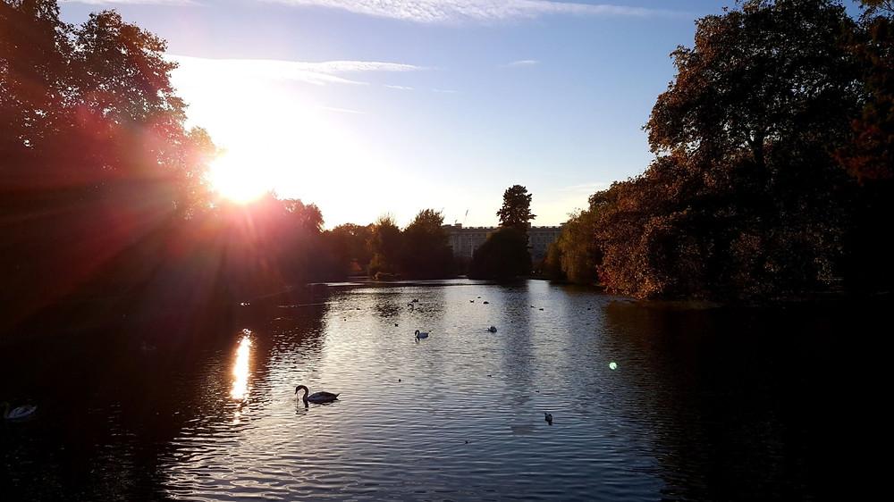 St James Place Park