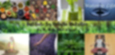 Institute For Holistic Nutrition Banner.