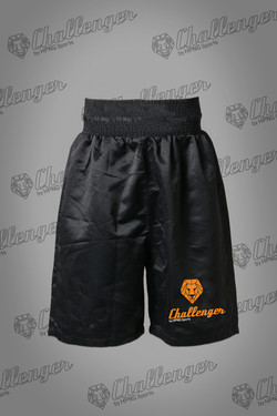 Boxing Challenger