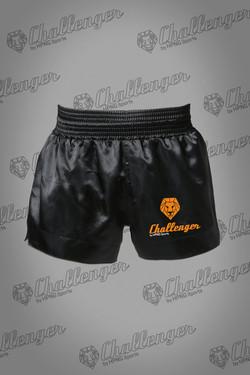 Kick boxing Challenger