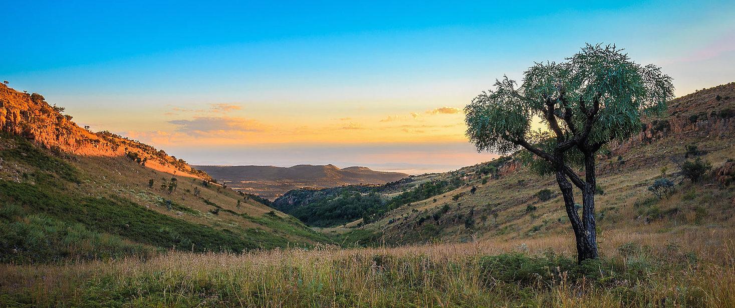 Somalialand nature.jpg