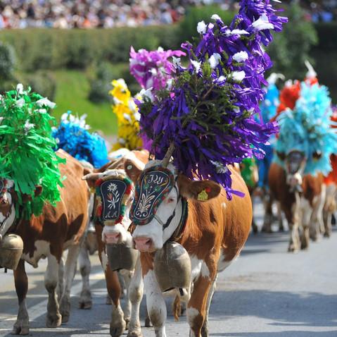 Traditionelle Veranstaltungen