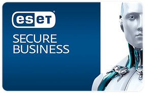 Secure_Business_1200x.png