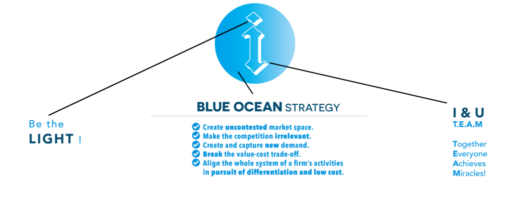 iEM Blue Ocean Strategy iEM International Entrepreneur Platform 宏发国际企业家平台