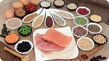 Animal Protein.jpg