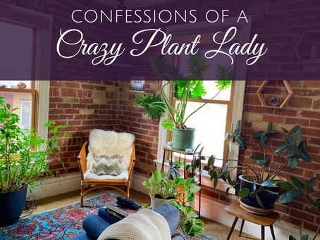 Confessions of a Crazy Plant Lady