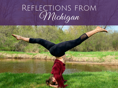 Reflections from Michigan