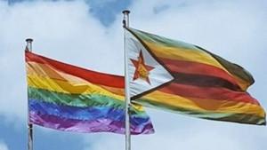 Decriminalise LGBTIQ consentual sex for the Gay community in Zimbabwe.