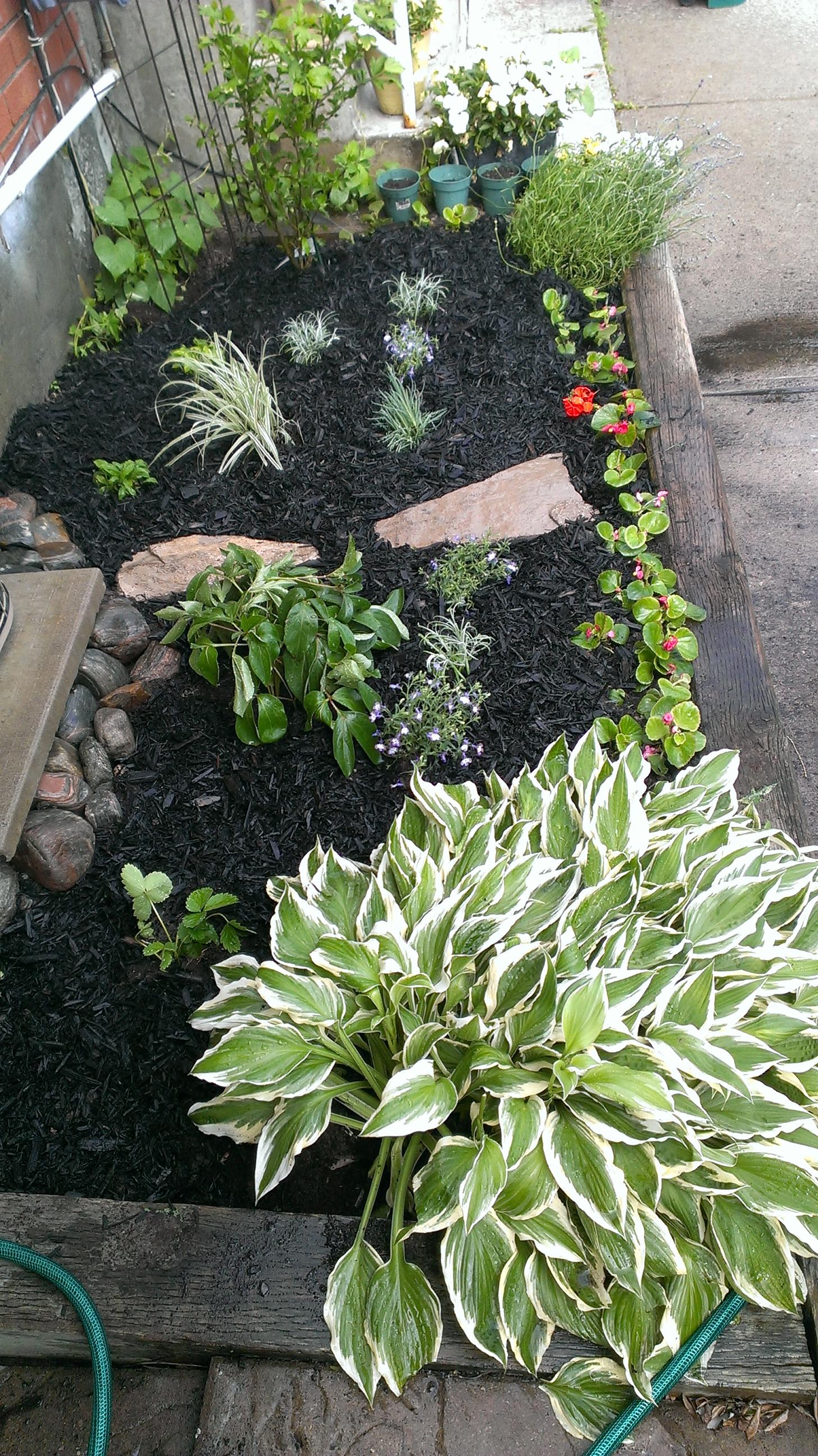 flowerbed maintenance.jpg