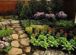 Flower/shrub planting