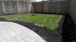 backyard1 - before.jpg