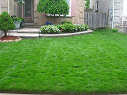 Lawn&flowerbed maintenance.JPG