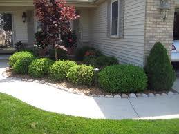 shrubcare.jpg