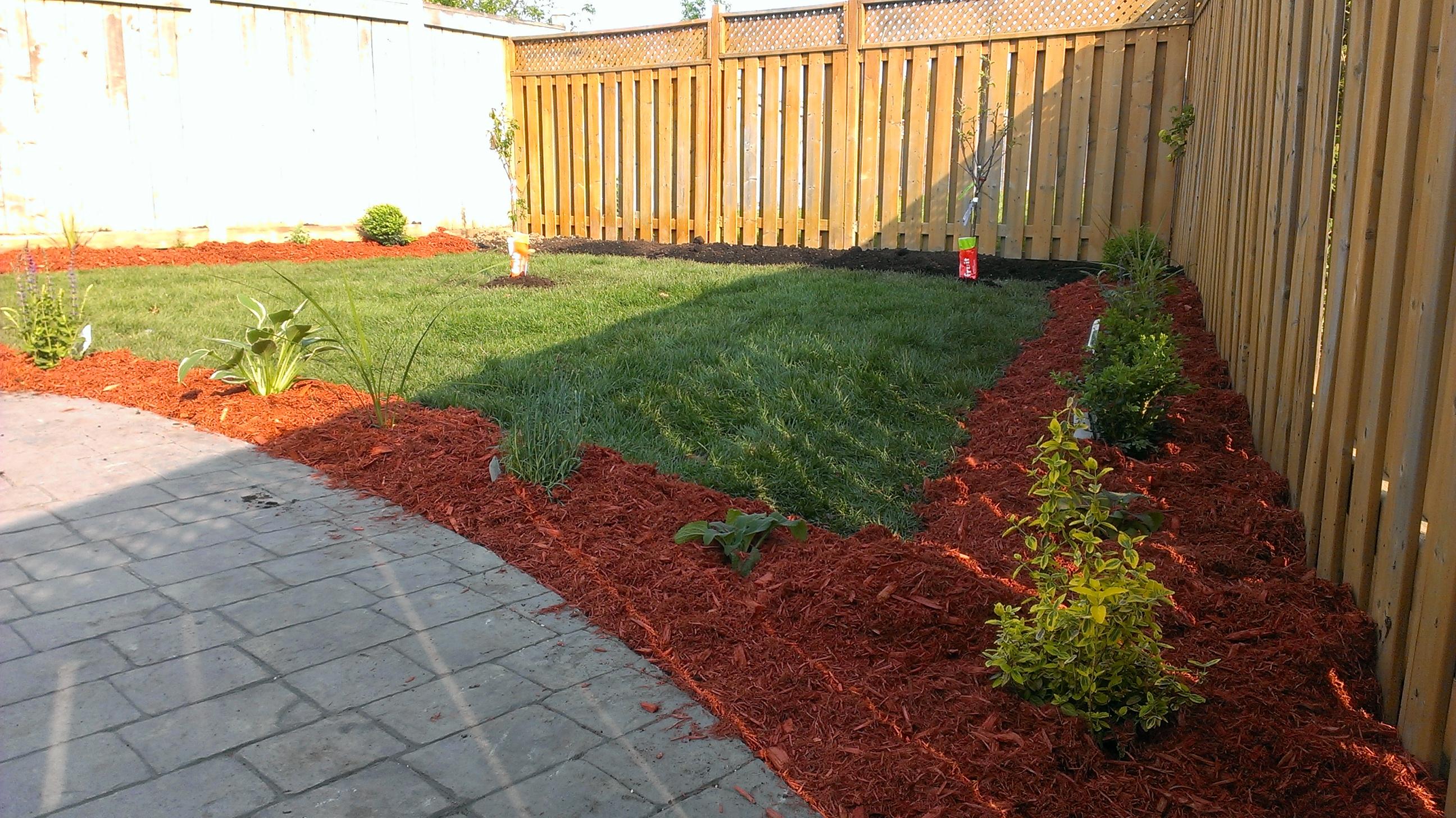 backyard1- after.jpg
