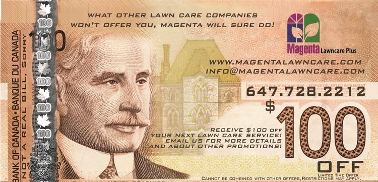 100-bill-MAGENTA(1).jpg