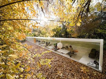 Архитектурный офис в центре леса в Мадриде