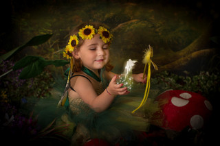 Fairy photography in Hertford