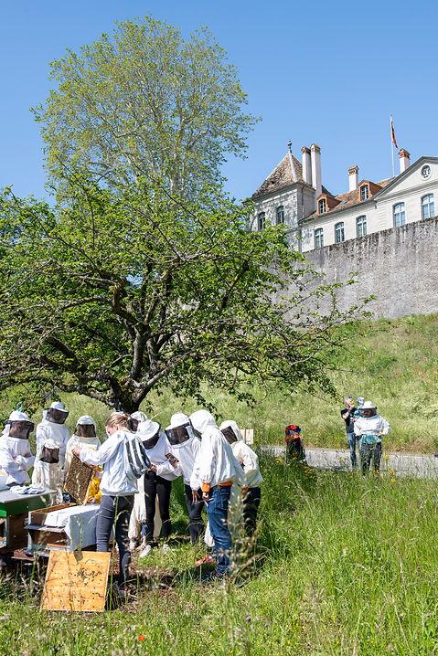 Visite de rucher au Chateau de Prangins © Musée national suisse