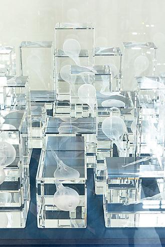 Jarpa_V_Blindness archives close up2b.jp