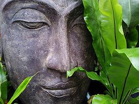 zen-178992_960_720.jpg