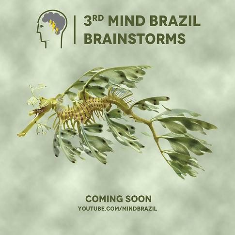 Brainstorms 3 coming soon.jpeg