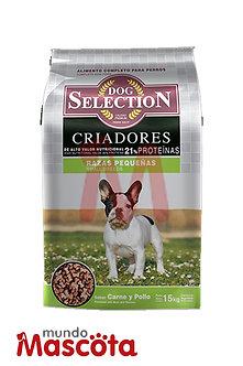 Dog Selection Criadores Adulto Raza Pequeña Mundo Mascota Moreno