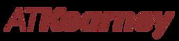 Social logo 1.png