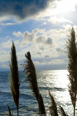 Biarritz 1.6