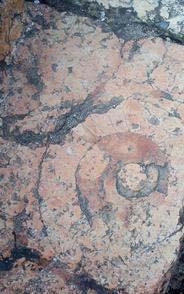 Stone-pathway.jpg